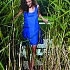 Sukienka day&night 1001-Blue